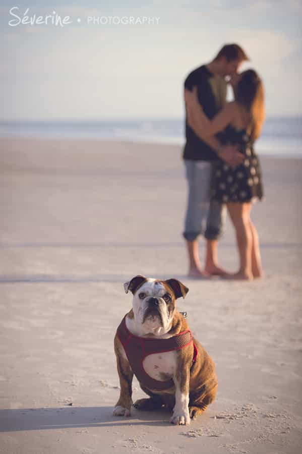 Jacksonville Beach Pictures with dog