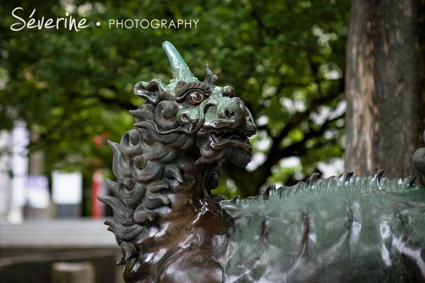Fukuoka Dragon Japan
